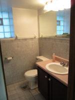 More Bathroom Demolition + Renovation Surprises